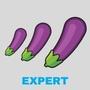Expérience : Expert